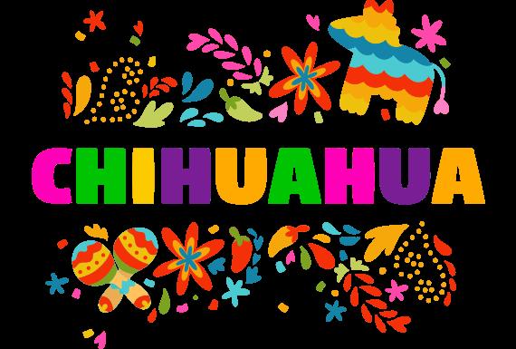 Agencia SEO Chihuahua